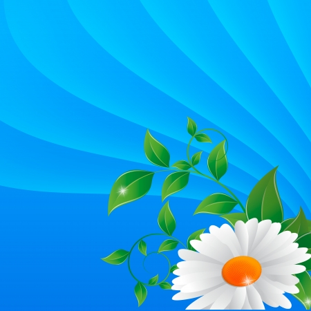 daisy on a vector abstract background Vector