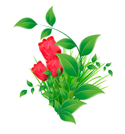 tuft: vector illustrator of Green tuft of grass with leaves and tulips