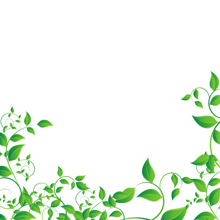 Nature concept with green leafs