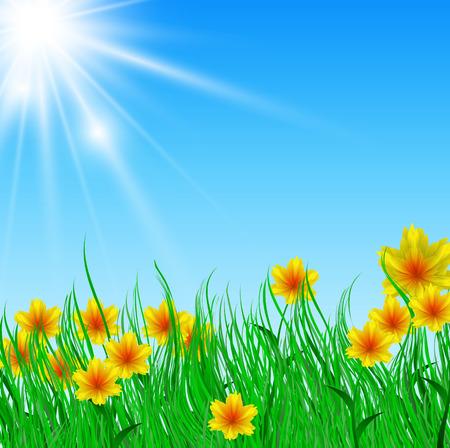 horizon over land: Vector illustration of field of flower with bright sun Illustration