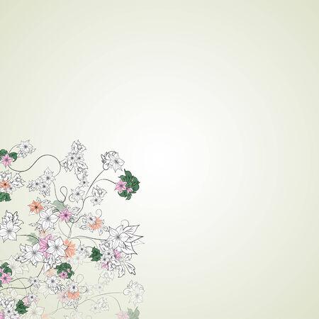 Vector illustration of delicate flowers on a light background Illustration