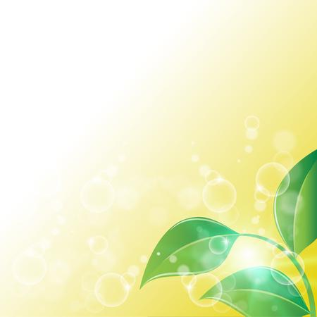 ochtend dauw: prachtige natuur achtergrond Stock Illustratie