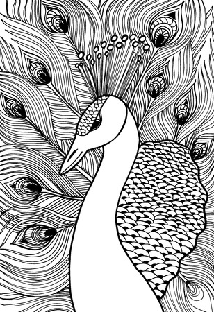 peacock pattern: Decorative ornamental peacock. Doolle style Illustration