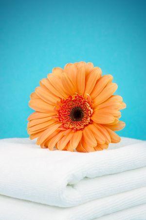 Orange flower on a white towels