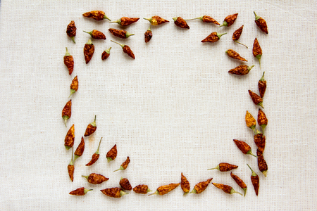 hot frame: Hot dried chili on an old canvas, frame for text