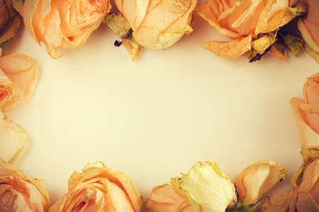 bouquet de fleurs: fond d�licat avec des roses fan�es dans un style vintage avec place libre pour le texte Banque d'images