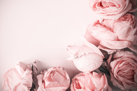 free place: Delicate background with faded roses in vintage style with free place for text