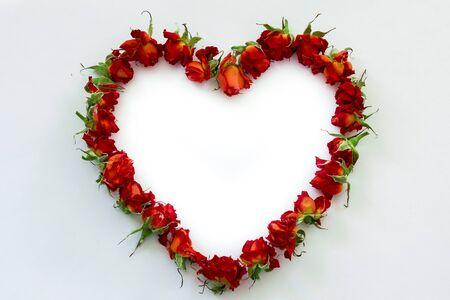 image of Heart-shaped red roses on white background Reklamní fotografie