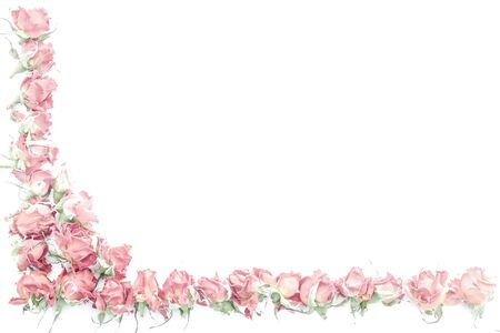 Background with pink roses isolated on white with sample text