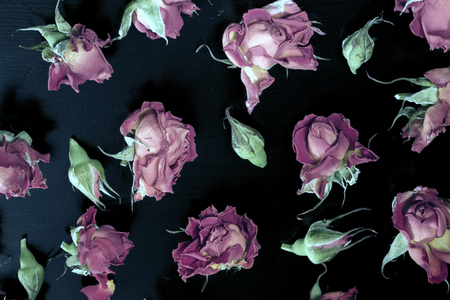 chaotically: chaotically arranged roses and buds on a black background