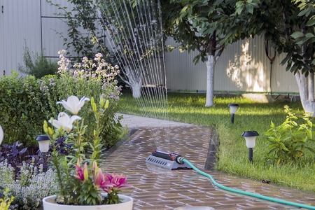 Irrigation system - technique of watering in the garden. Stock Photo