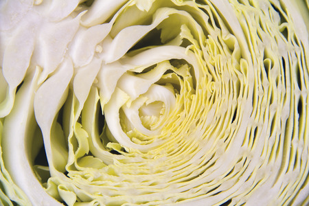 Half sliced ??fresh raw cabbage with wavy leaves, horizontal picture