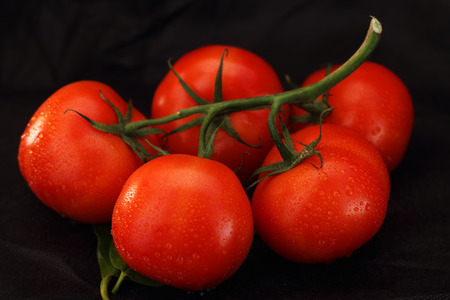 bunch of red tomatoes on a leaf and white background