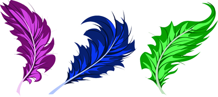 light lace feathers in blue, pink, green, vector, pens