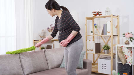 asian millennial wife holding her big belly approaching couch to remove dust with a feather broom. pregnancy and taking care of the housekeeping concept. genuine lifestyle Reklamní fotografie