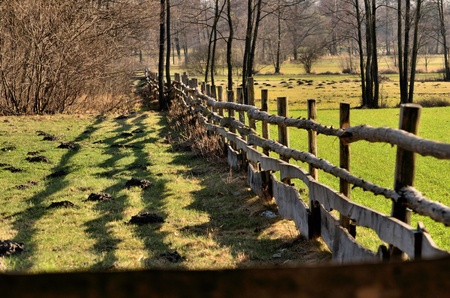 The photo shows a wooden fence around the pasture for horses  Stock Photo - 13051124