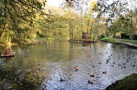 The photo shows the ponds and stored on them birds in the city park  Stock Photo - 13319851