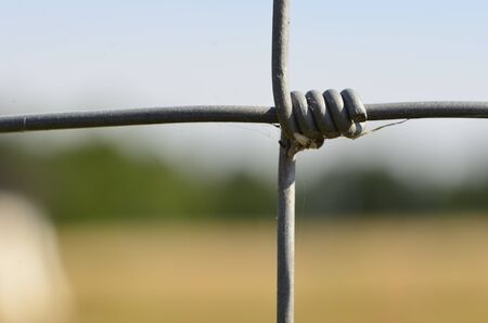 fencing wire: This photo present wire fence - part - on a blurred background  Stock Photo