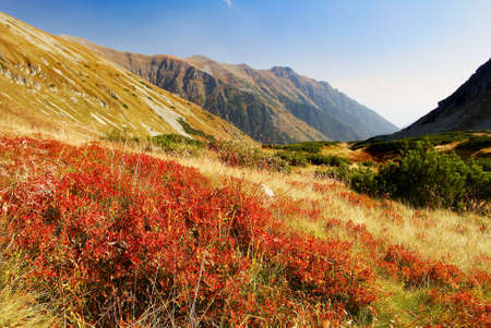 tatra: autumnal view from rohace mountains - west high tatra mountains- slovakia - europe