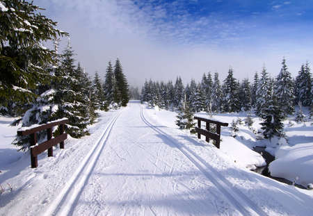 snow capped: wintry landscape scenery with modified cross country skiing way