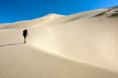 ondulation: d�sert - Mongolie