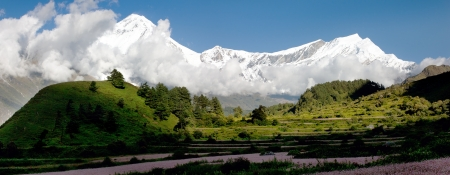 nepali: view from annapurna himal to dhaulagiri himal with buckwheat field