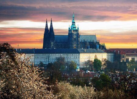 Colorful Prague gothic Castle  prazsky hrad  above the River Vltava in the morning, Czech Republic