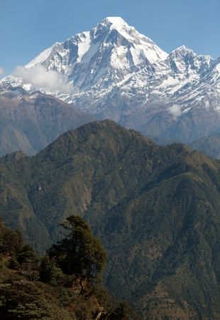 View of mount Dhaulagiri - Nepal  photo