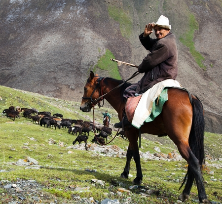 pastureland: 10th of October 2013 - stockrider with flock in Alay mountains on pastureland - life in Kyrgyzstan  Editorial