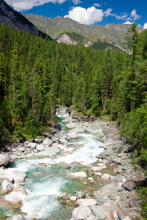 streamlet: sumak river - sayan mountains - buryatia - russia