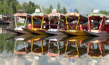 Shikara boats on Dal Lake in Srinagar, Jammu and Kashmir, India