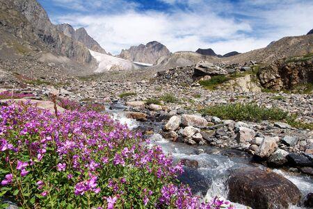 Karagem valley Altai mountains - Russia