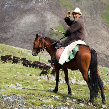 pastureland: 10th of October 2013 - ALAY MOUNTAINS, KYRGYZSTAN - stockrider with flock in Alay mountains on pastureland - life in Kyrgyzstan