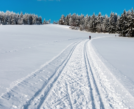 crosscountry: wintry landscape scenery with modified crosscountry skiing way