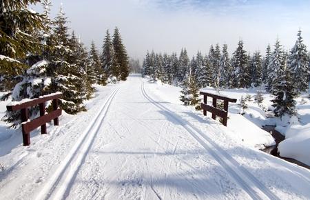 cross country: paisaje invernal paisaje con forma modificada esqu� de fondo