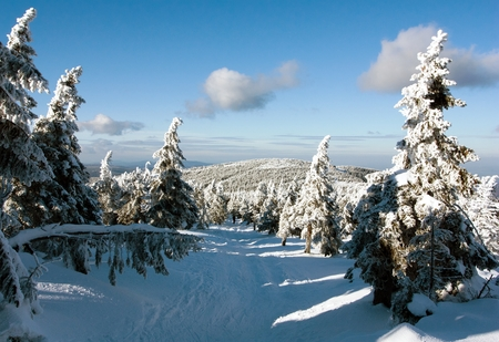 view of crosscountry skiing way and mount Serak - Jesenik mountains- Moravia - Czech republic photo