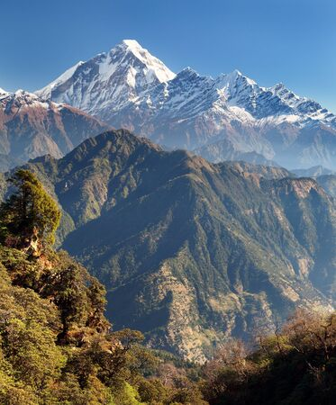 guerrilla: panoramatic view from Jaljala pass of Dhaulagiri and Annapurna Himal  Guerrilla trek in Western Nepal