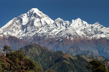 panoramatic: panoramatic view from Jaljala pass of Dhaulagiri and Annapurna Himal  Guerrilla trek in Western Nepal