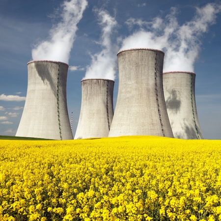 flowering plant: Nuclear power plant Dukovany with golden flowering field of rapeseed - Czech Republic - two possibility for production of energy Stock Photo