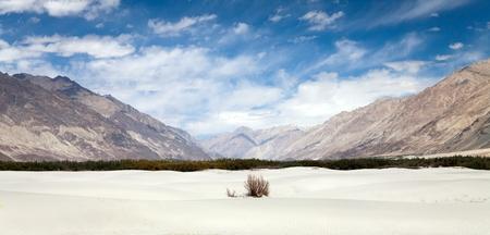 kashmir: Dunes in Nubra Valley - Ladakh - Jammu and Kashmir - Indian Himalayas Stock Photo