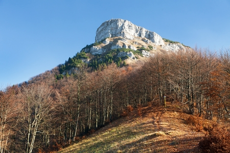 broad leaved tree: Top of mount Klak, autumnal view from Mala Fatra mountains, Carpathians, Slovakia