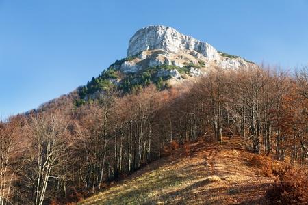 broad leaved tree: Top of mount Klak, autumnal view from Mala Fatra mountains, Carpathians, Slovakia