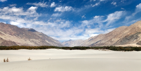 high sierra: Dunes in Nubra Valley - Ladakh - Jammu and Kashmir - Indian Himalayas Stock Photo