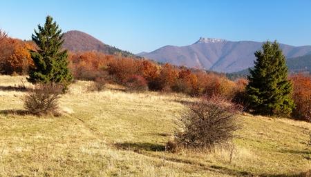 broad leaved tree: Autumnal view of mount Klak, Mala Fatra from Strazovske vrchy, Slovakia Stock Photo
