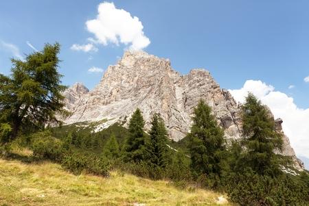 View of Monte Pelmo with larch wood, South Tirol, Dolomiten mountains, Italien European Alps Stock Photo