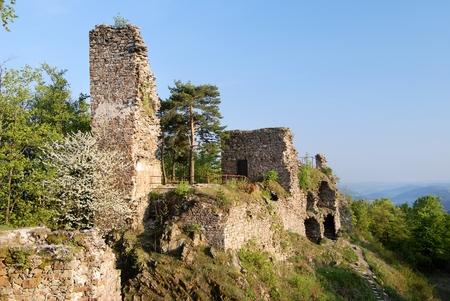 mediaeval: ruin of zubstein castle - evening shine - czech republic
