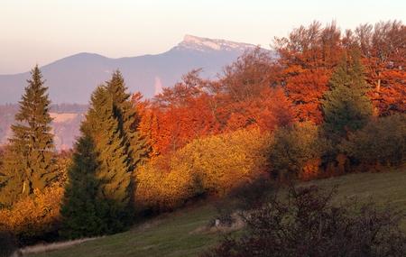 Evening utumnal view of mount Klak, Mala Fatra, Strazovske vrchy, Slovakia