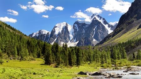 larch tree: savlo szavlo valley and rock face - altai mountains russia