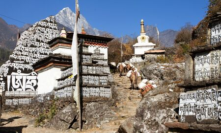 nepali: Buddhist prayer mani walls with stupa, prayer flag and caravan of mules, way to Everest base camp, way from Lukla to Namche Bazar, Nepal
