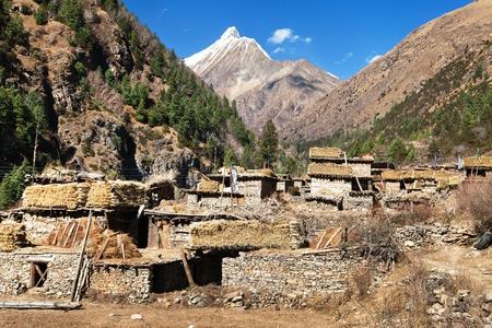 guerrilla: Pungmo village - Lower Dolpo - western Nepal